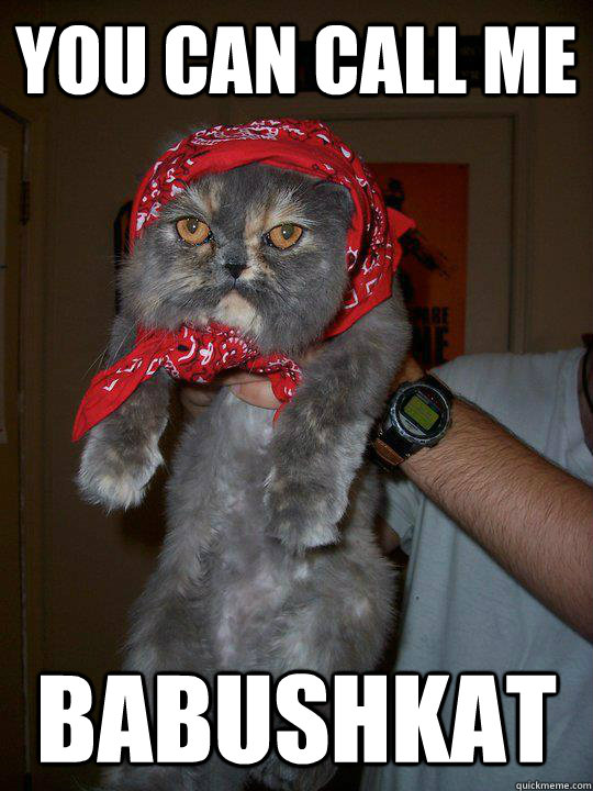 you can call me babushkat - Soviet Cat
