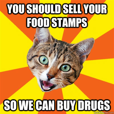 you should sell your food stamps so we can buy drugs - Bad Advice Cat
