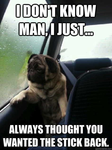 i dont know man i just always thought you wanted the st - Introspective Pug