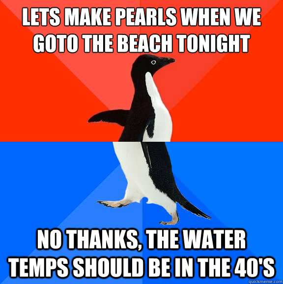lets make pearls when we goto the beach tonight no thanks t - Socially Awesome Awkward Penguin