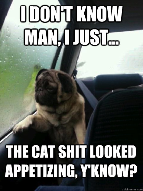i dont know man i just the cat shit looked appetizing  - Introspective Pug