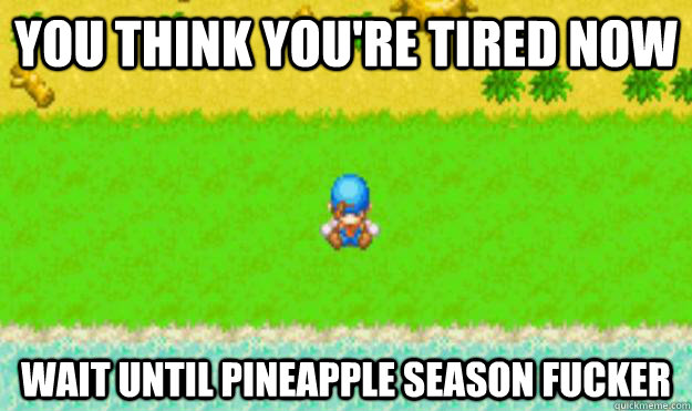 you think youre tired now wait until pineapple season fucke - Harvest Moon