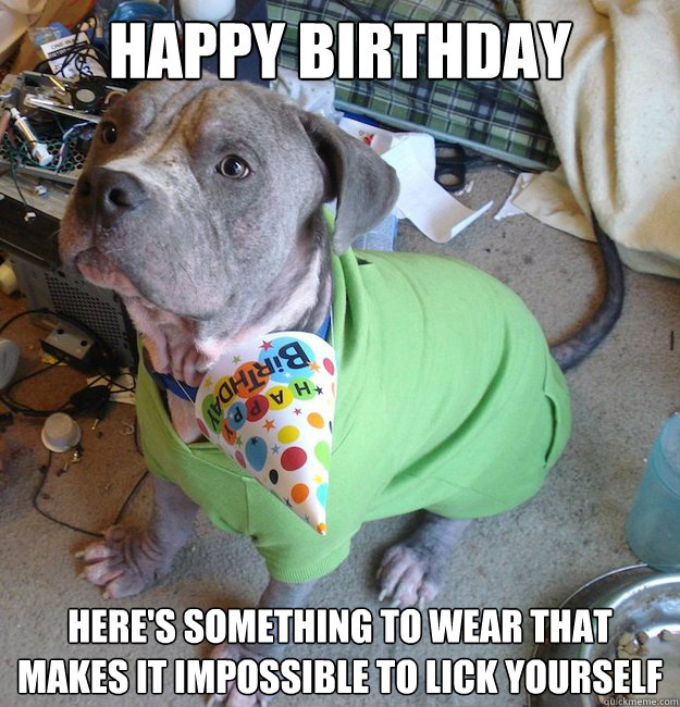 happy birthday heres something to wear that makes it imposs - Sad Birthday Dog