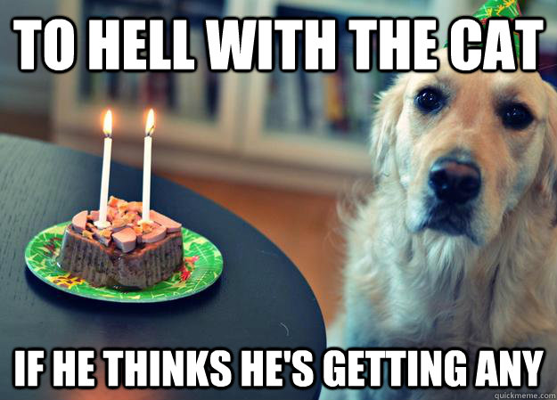 to hell with the cat if he thinks hes getting any - Sad Birthday Dog