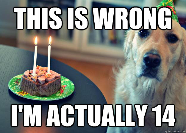 this is wrong im actually 14 - Sad Birthday Dog