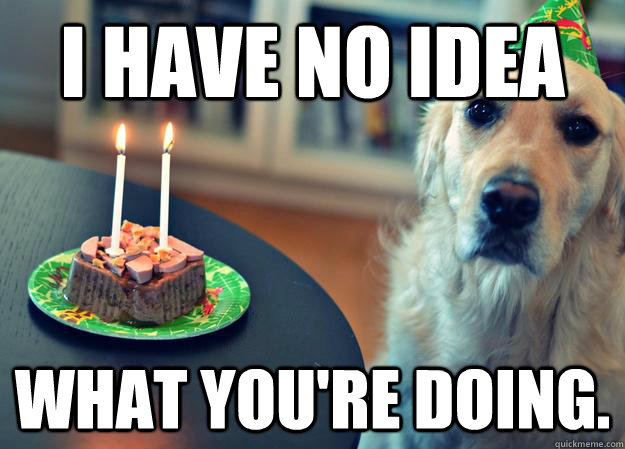 i have no idea what youre doing - Sad Birthday Dog