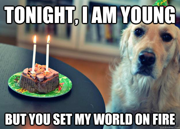 tonight i am young but you set my world on fire - Sad Birthday Dog