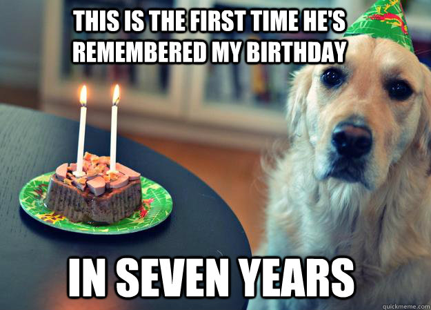 this is the first time hes remembered my birthday in seven  - Sad Birthday Dog