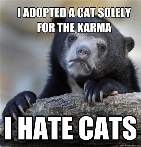 i adopted a cat solely for the karma i hate cats - Confession Bear