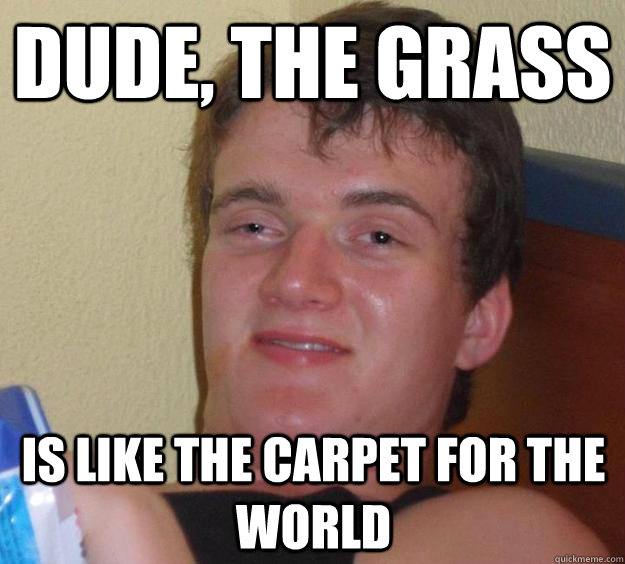 dude the grass is like the carpet for the world - 10 Guy