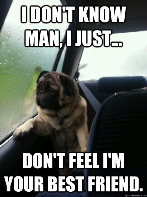 i dont know man i just dont feel im your best friend - Introspective Pug