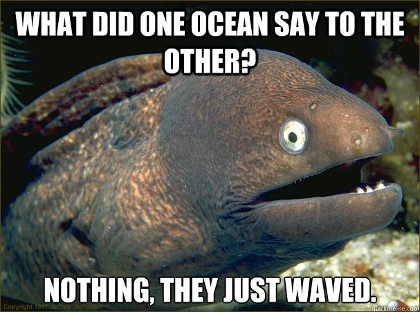 what did one ocean say to the other nothing they just wave - Bad Joke Eel