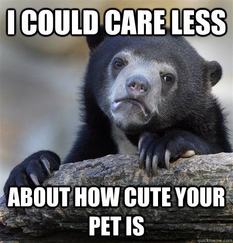 i could care less about how cute your pet is - Confession Bear