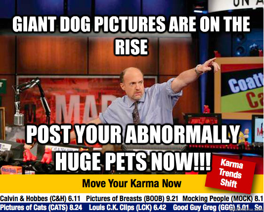 giant dog pictures are on the rise post your abnormally huge - Mad Karma with Jim Cramer