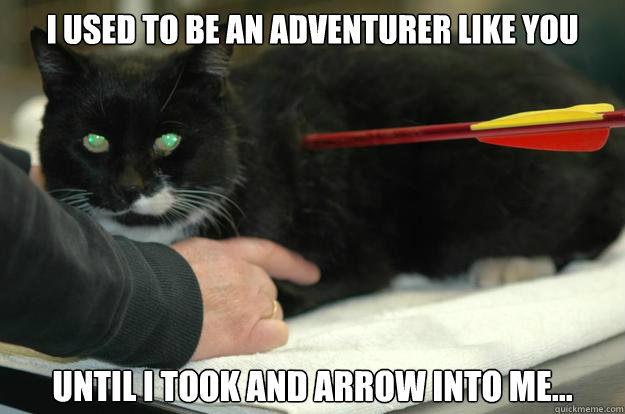 i used to be an adventurer like you until i took and arrow i - Skyrim Cat