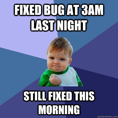 fixed bug at 3am last night still fixed this morning - Success Kid