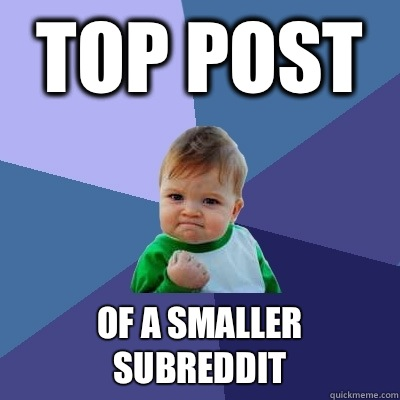 Top post Of a smaller subreddit - Success Kid