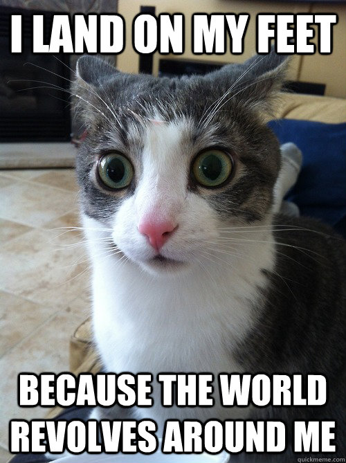 i land on my feet because the world revolves around me - Sudden Clarity Cat