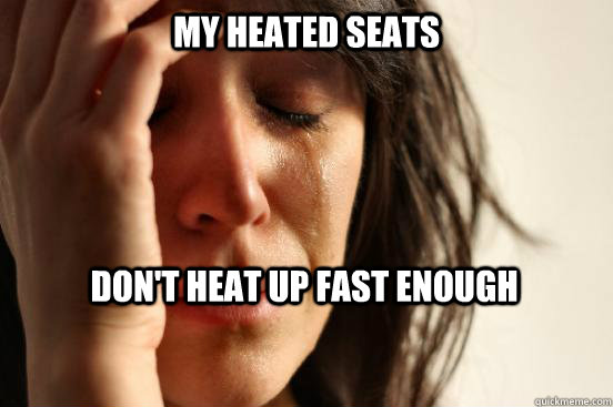 my heated seats dont heat up fast enough - First World Problems