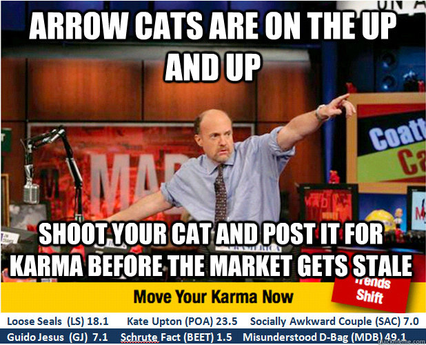 arrow cats are on the up and up shoot your cat and post it f - Jim Kramer with updated ticker