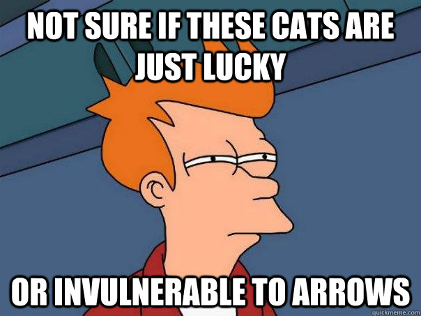 not sure if these cats are just lucky or invulnerable to arr - Futurama Fry