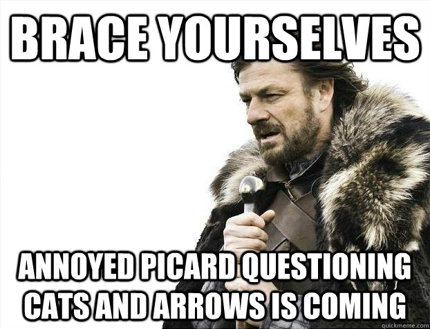 brace yourselves annoyed picard questioning cats and arrows  - Brace yourselves