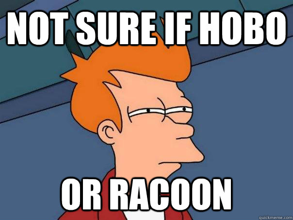 not sure if hobo or racoon - Futurama Fry