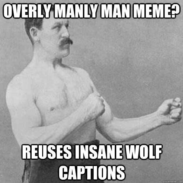 overly manly man meme reuses insane wolf captions - overly manly man