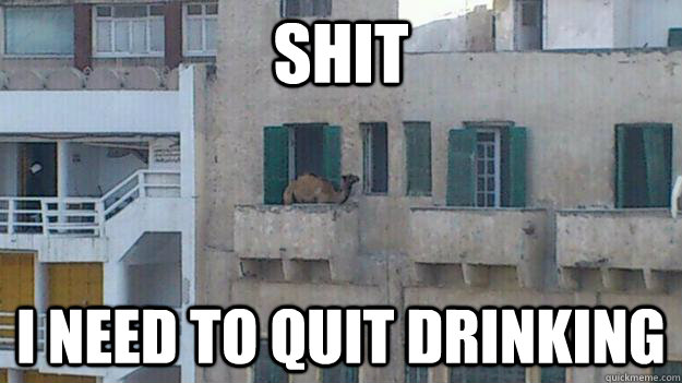 shit i need to quit drinking -