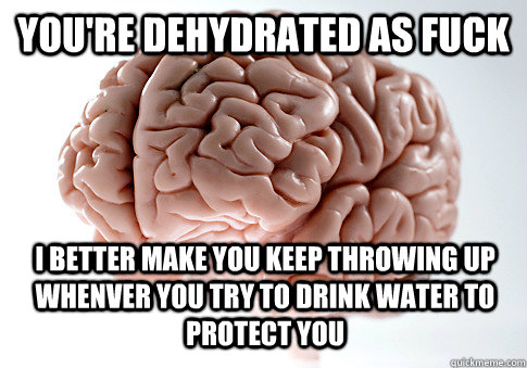 youre dehydrated as fuck i better make you keep throwing up - Scumbag Brain