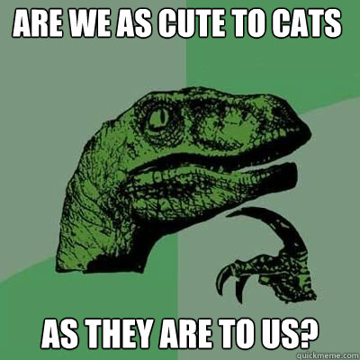 are we as cute to cats as they are to us - Philosorapter