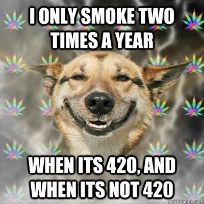 i only smoke two times a year when its 420 and when its not - Stoner Dog