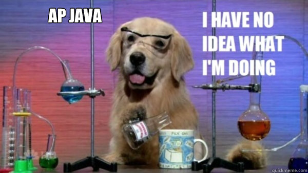 ap java  - science dog