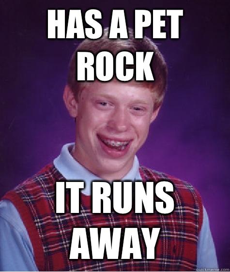 Bad luck brian pet rock
