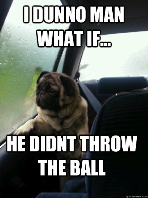 i dunno man what if he didnt throw the ball  - Introspective Pug