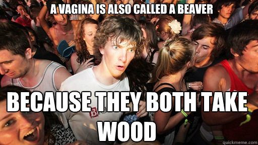 a vagina is also called a beaver because they both take wood - Sudden Clarity Clarence