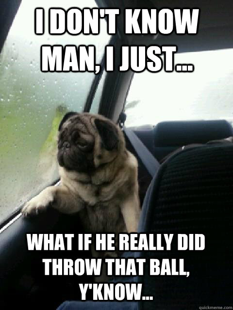 i dont know man i just what if he really did throw that - introspective pug on cesar millan