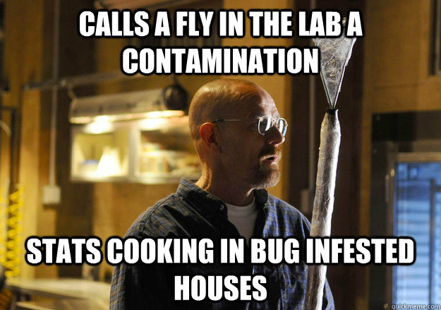 calls a fly in the lab a contamination stats cooking in bug  - walter vs fly