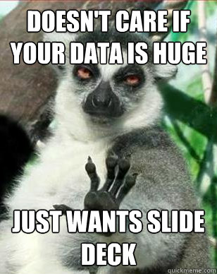 doesnt care if your data is huge just wants slide deck - Business Decisionmaker