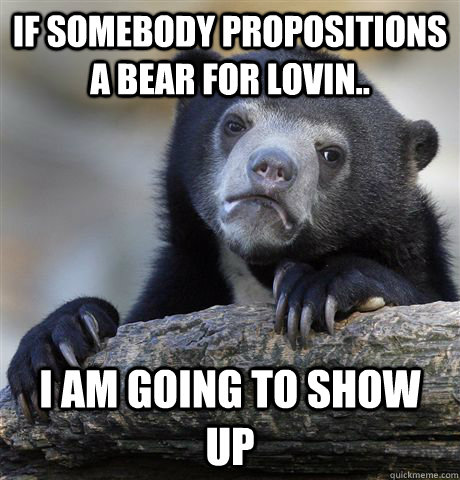 if somebody propositions a bear for lovin i am going to sh - Confession Bear