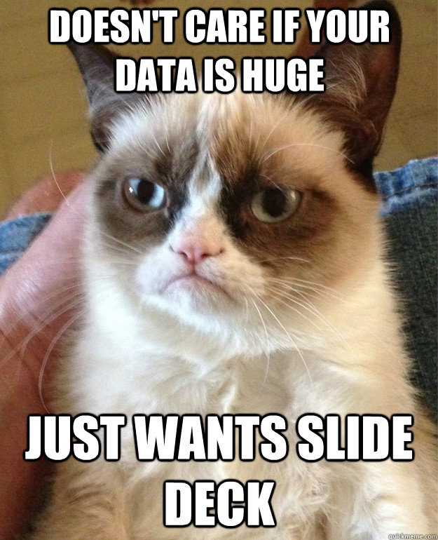 doesnt care if your data is huge just wants slide deck - Grumpy Cat