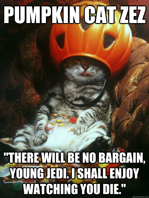 pumpkin cat zez there will be no bargain young jedi i sha - Pumpkin Cat