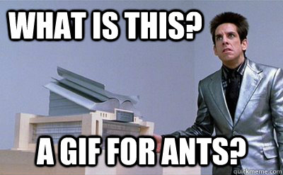 what is this a gif for ants - Zoolander