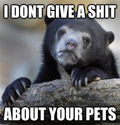i dont give a shit about your pets - Confession Bear