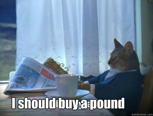 i should buy a pound - Fancy Cat
