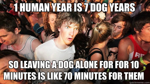 1 human year is 7 dog years so leaving a dog alone for for  - Sudden Clarity Clarence