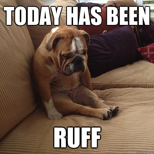today has been ruff - depressed dog