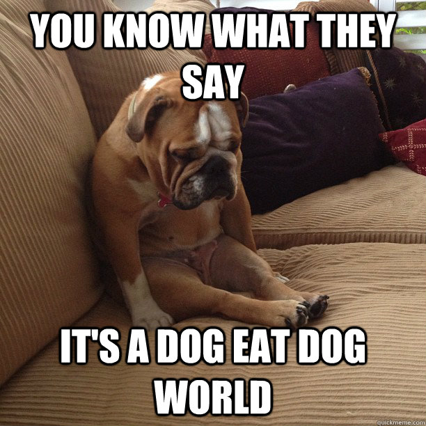 you know what they say its a dog eat dog world - depressed dog