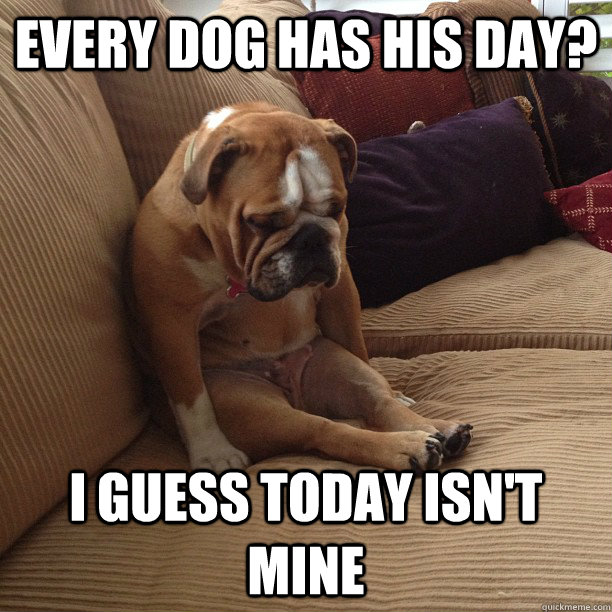 every dog has his day i guess today isnt mine - depressed dog