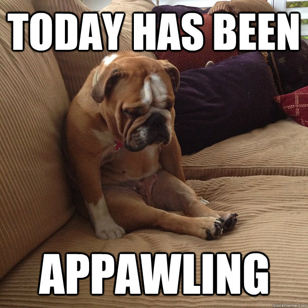 today has been appawling - depressed dog
